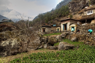 Rural scene between Koshigaun village and Phakding