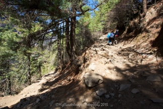 The steep rugged track as we headed upwards towards Namche Bazaar from Jorsalle.