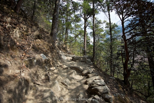 The steep, rugged track up to Tengboche on the last few kilometres between Namche Bazaar and Tengboche.