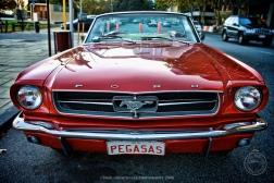 Perth 15 of 67_FE