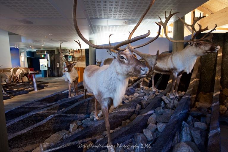 Hardangervidda Nature Centre, Eidfjord, Norway